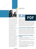 Descrpcion General SAP Business One