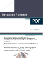 Surfactant e Pulmon Ar
