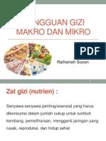 Gangguan Gizi Makro Dan Mikro