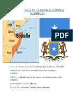 POSICION OFICIAL DE LA REPUBLICA FEDERAL DE SOMALIA.docx