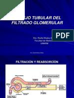 3.1.Manejo Tubular Filtrado Glome-16