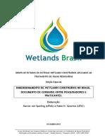 Boletim Wetlands Brasil - Edição Especial