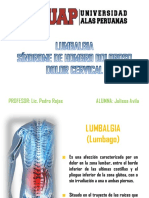 Lumbalgia, Síndrome de Hombro Doloroso y Dolor