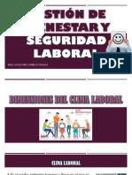 10 Semana Gestion de Bienestar y Seguridad Laboral