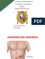 3.Pancreas