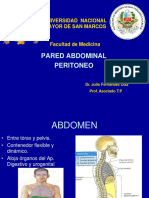 1. Pared Abdominal Peritoneo