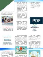 Brochur (Eje Tematico) 07 12 18