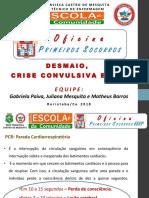 (2) Crise Convulsiva OFICINA Socorros