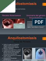 parasitosis (1)
