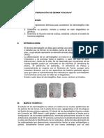 Dermatoglifos Infor 2