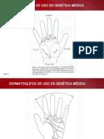Dermatoglifos de Uso en Genetica Medica1wuuu