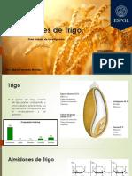 Gti de Bioquimica Trigo