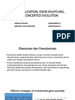 Gene Duplication, Exon Shuffling, And Concerted