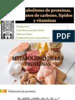Grupo 1 Metabolsmo de Las Proteinas, Carbohidratos , Lipidos y Vitaminas