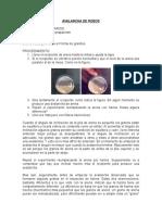AVALANCHA DE FIDEOS.doc
