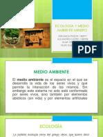 Ecologia y Medio Ambiente Minero