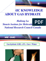 The Basic Knowledge About Gas Hydrate