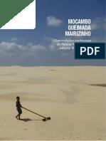 tcc O povo da morraria - luisa pinheiro.pdf