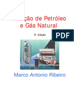 Medicao Petroleo Gas Natural-Ribeiro.pdf