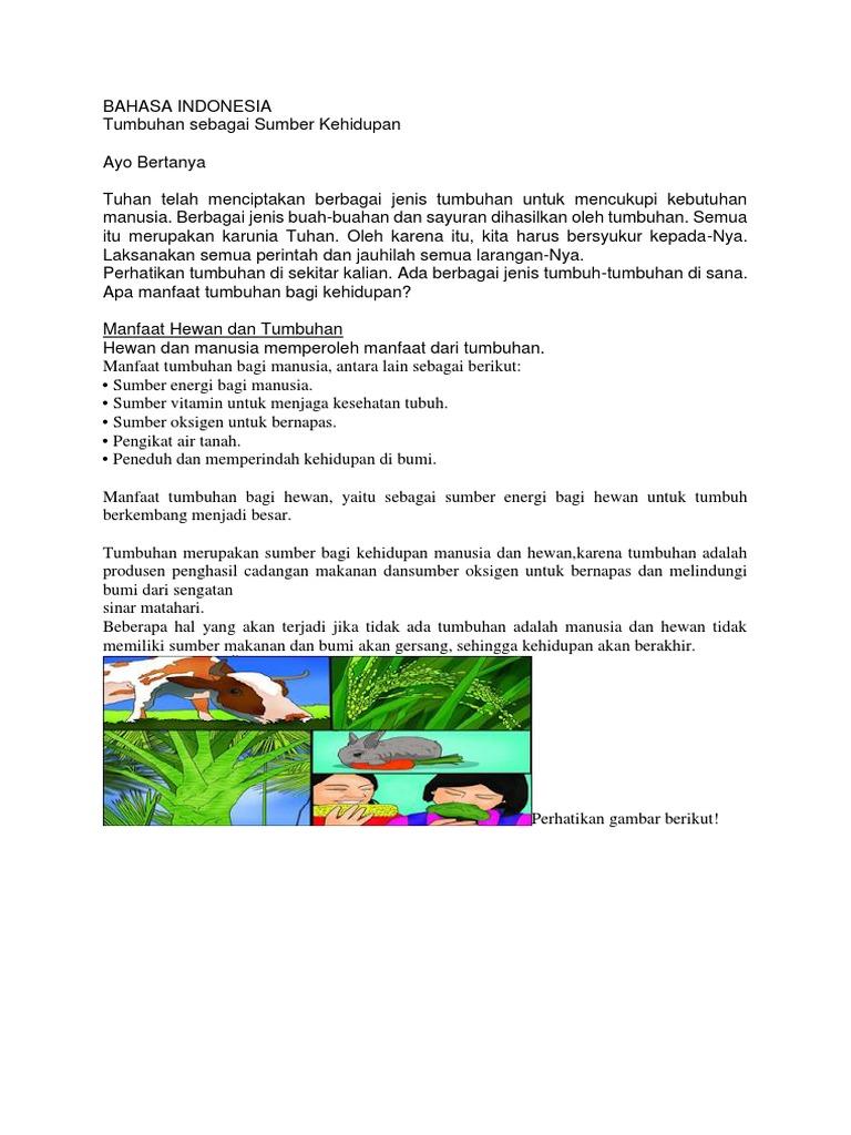 9700 Koleksi Gambar Manfaat Air Bagi Hewan Dan Tumbuhan Gratis Terbaik