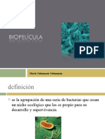 Biopelícula