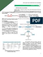 03 - Metabolismo do Glicogênio.pdf