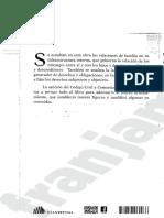 Manual de Derecho de Familia,Bossert Zanonni, 2016