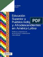 Educación Superior y Pueblos Indígenas y Afrodescendientes en América Latina
