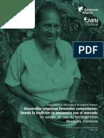 Desarrollar Empresas Forestales Comunitarias- Donde La Tradición Se Encuentra Con El Mercado- Rainforset Allience