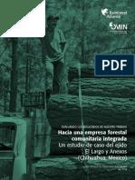 Hacia Una Empresa Forestal Comunitaria Integrada -R Allence