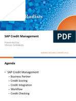 sap_credit_management_overview.pdf