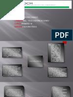 PDF Educacion Fisicaxd