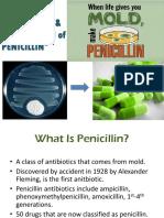 13.Penicillin fermentation.ppt