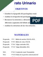 18-practico-urinario-2014.pdf