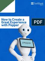 Pepper_B2BD_guidelines_Sept_V1.5.pdf
