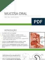 4 Mucosa Oral