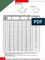 Equal_Tees_ANSI_B16.9.pdf