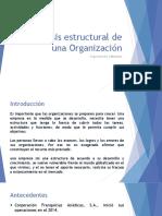 Análisis estructural de una Organización (4)