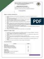 Ciruga_plstica.pdf