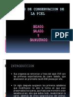 1secadosaladoysalmuerado-100309141524-phpapp01