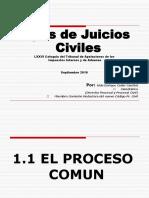 Presentacion Sobre Juicios Civiles Por Lic. Aldo Cader (1)