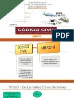 Exposicion Codigo Civil Libro II