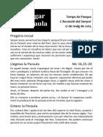 507b cmf Lectio 17-05-15 Ascensió.pdf
