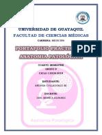 CARPETA PRACTICA ANDREA COLLAGUAZO.docx