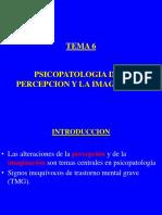 Tema 5 PsicoÀtologia de La Imaginacion y de La Percepcion