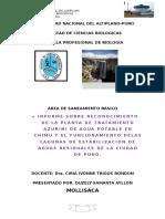 SANEAMIENTO-AMBIENTAL (3)
