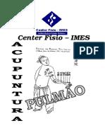 meridianos pulmao.pdf