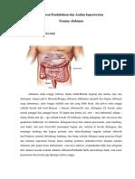 abdomen lila.docx