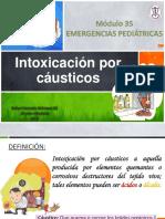 Intoxicacinporcusticos 151123001533 Lva1 App6891