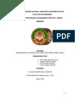 Informe de Supervision